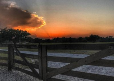 Gate at Sunset - Triple Tree Ranch