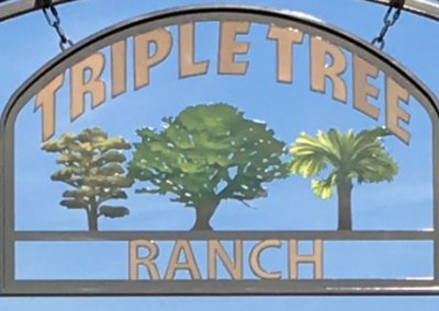 Triple Tree Ranch